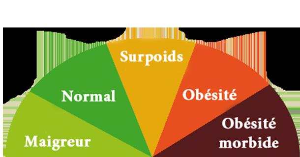 Comment calculer son IMC indice de masse corporelle femme