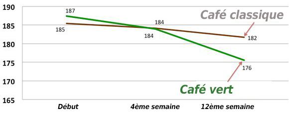 Graphique de perte de poids du café vert en comparaison au café classique